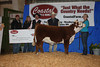 2011 Albany Show &amp; Sale : Phone: (208)599-2962 or click here to send email